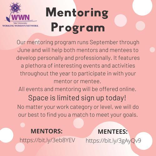 WWN Mentorship Program Flyer