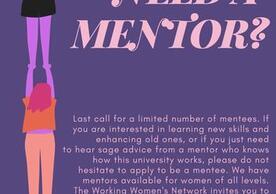 Mentorship Program Flyer